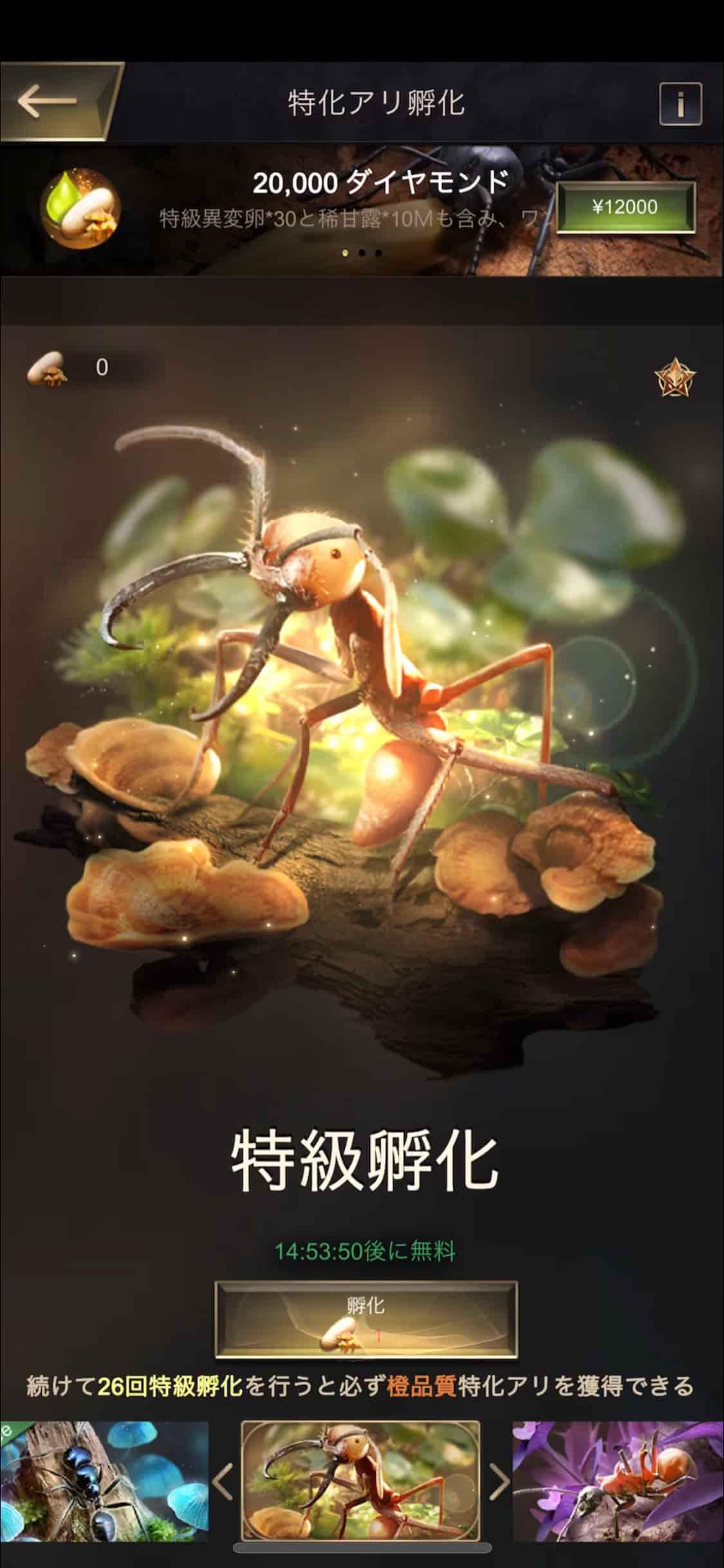 卵を孵化してレアリティの高いアリをランダムゲット!
